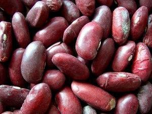 Beans_Kidney_Blog