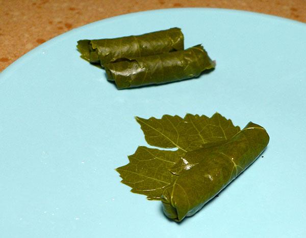 GrapeLeavesStuffed_Turkish_8
